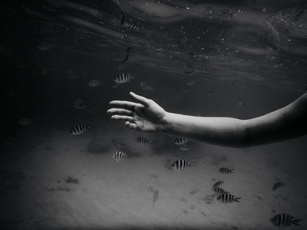 rajskie-wyspy-nurkowanie-seszele-seychelles-praslin-ladigue-dive